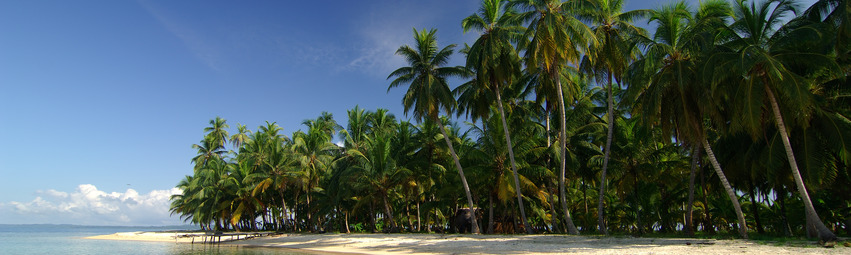 Panama Turismo | Isla Iguana
