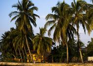 Viajes a Panama | Bocas Playa