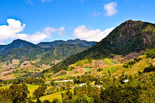 Viajes a Panama   Boquete Cerro punta