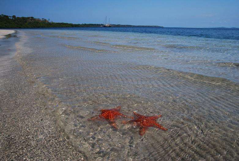 Viaje a Panama | Bocas Estrella