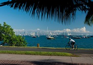 Viajes a Panama | Causeway