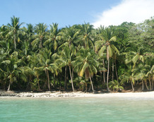 Viaje a Panama | Boca Chica.jpg