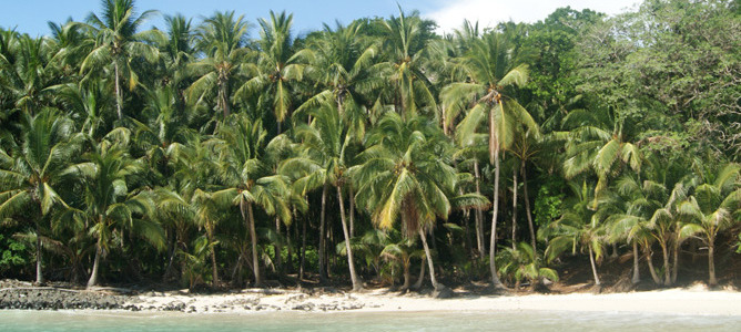 Viaje a Panama   Boca Chica.jpg